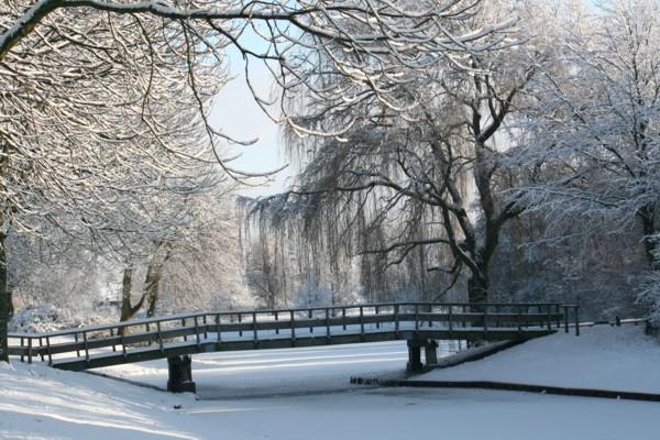 Winter in Lelystad by TracyK