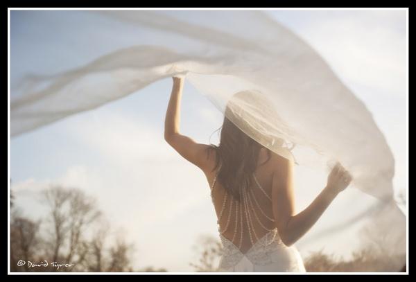 Bridal Veil by Dave_Tyrer