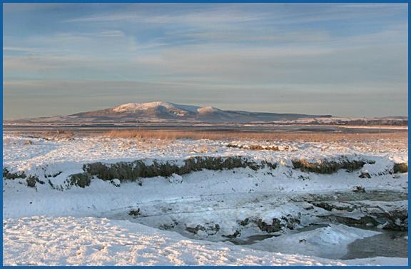 Winter Scene by aliciabeesley