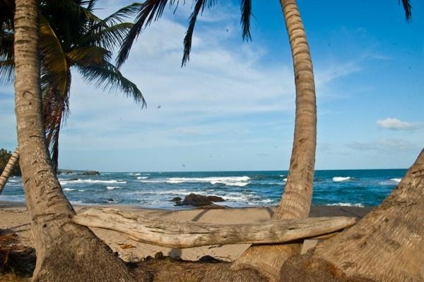 Seaside by darrylhp