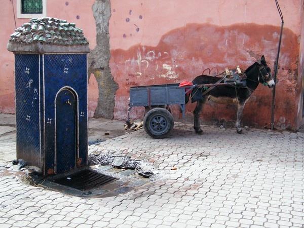 In old Marrakech by erichoulder