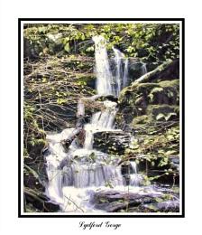 Lydford Gorge 2