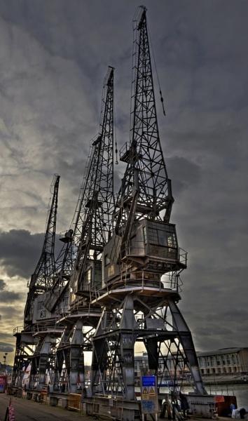bristol cranes by seeky007