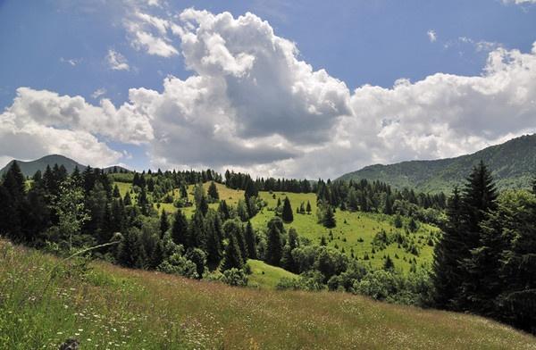 Rucar - Bran - Summer landscape by ironoctav