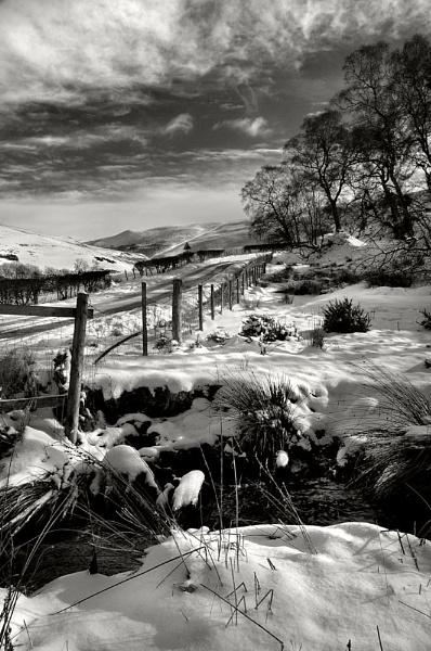 Winter scene by bobalot