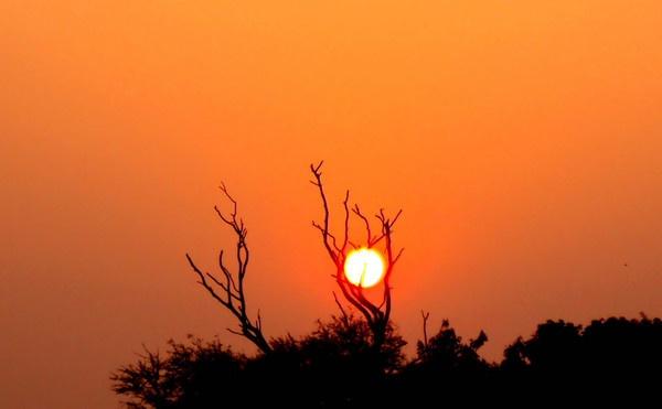 Digital Sunrise by Anirban_ind