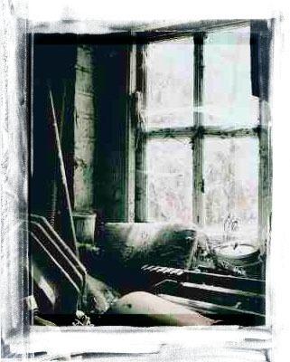 Window by Madlo