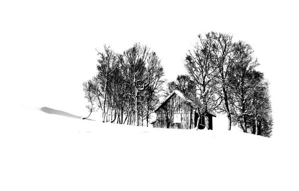 Winter in BW by widols
