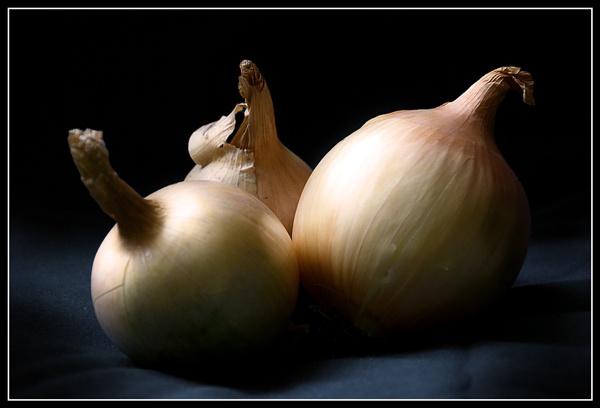 Onion by Kot