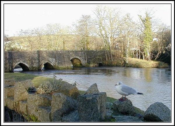 Lostwithiel bridge and the river Fowey by rpba18205