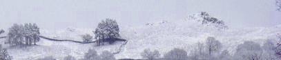 Snowy Water by wilderhearty