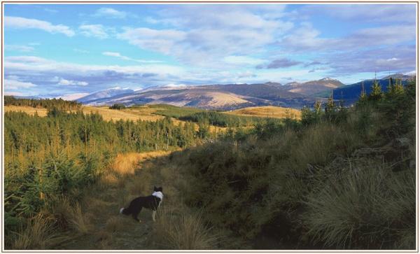 Leaccain landscape by maryg