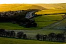 Late Afternoon On The Downs by JJGEE