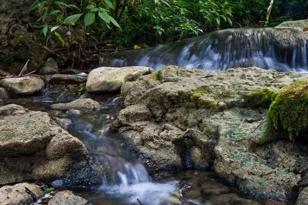 Aripo falls by darrylhp
