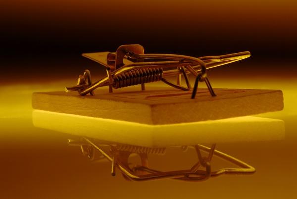 Mousetrap by alexshairp