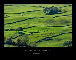 Troutbeck Pastures