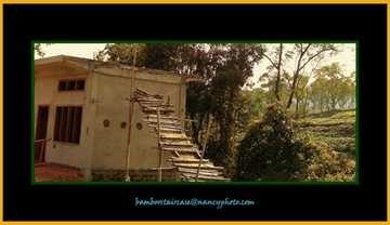 Bamboo staircase by nancy_borah