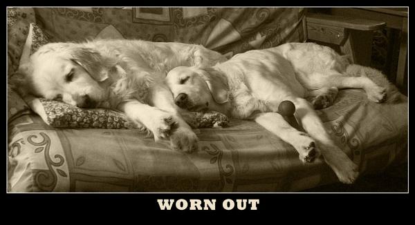 Worn Out by jasonrwl
