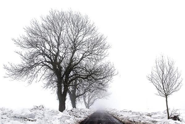 Mid Winter by CaptainTweaky