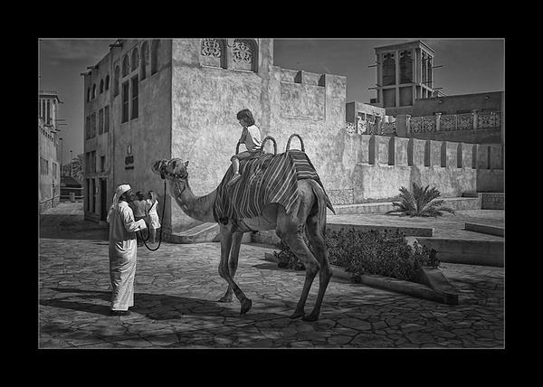 Camel Ride III by Saigonkick
