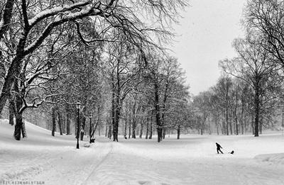 In Slottsparken by EllieEdge