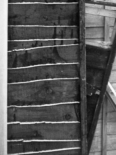 Wood Slabs by lev93