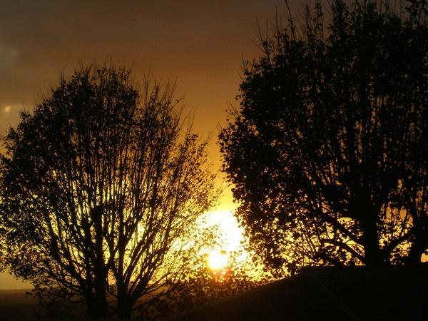 sun set of light by love_photo