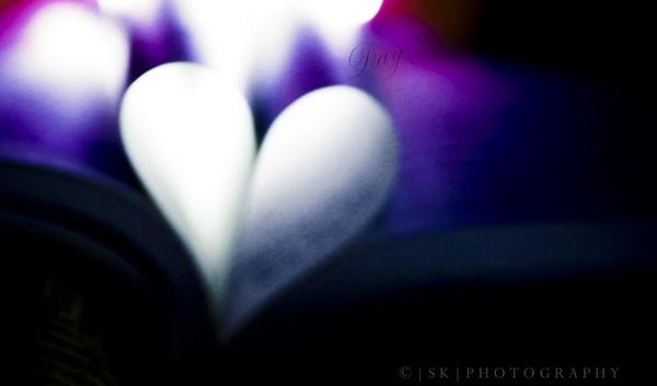 Heart by rebelmv