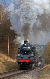 Standard Steam ...