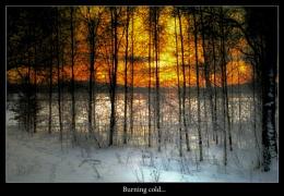 BURNING COLD...