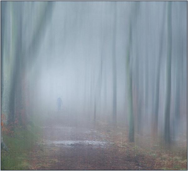 Morning Mist by MalcolmM