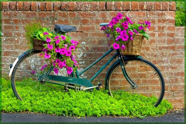 The Bike Garden by bigLol