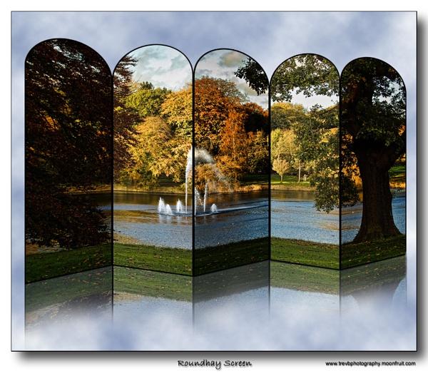 Roundhay Screen by TrevBatWCC