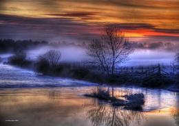 eyebridge mist