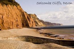 Salcombe Cliffs, Sidmouth, Devon