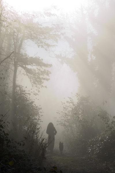 misty morning by heyokah