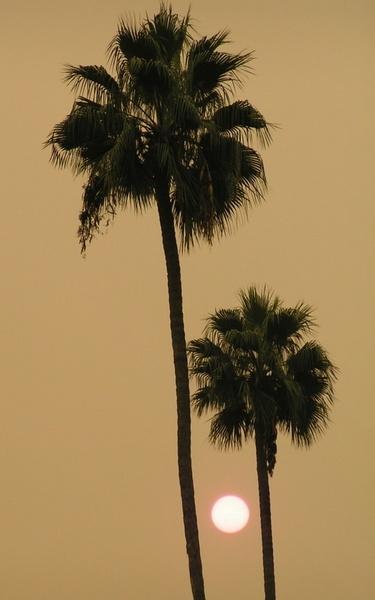 Smokey sky by Aldo Panzieri