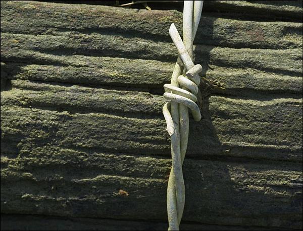 Wire by dwilkin