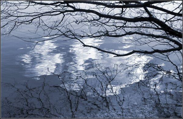 Ripple reflections by JPatrickM