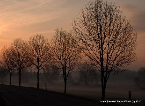 Good Morning by mlseawell