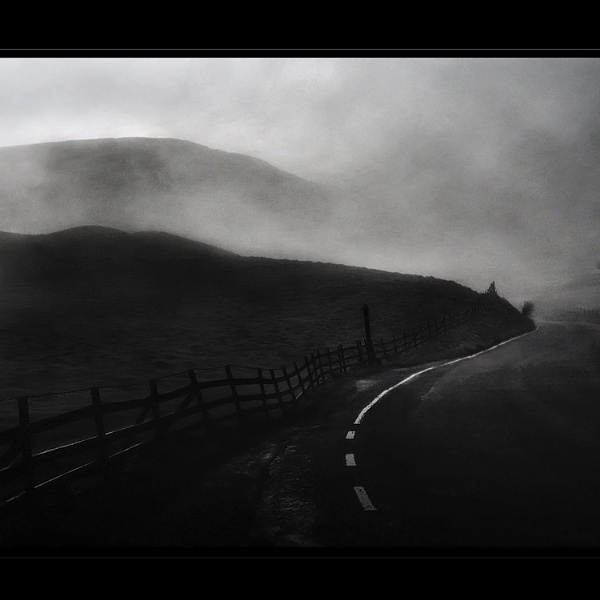 In to the Mist by woodlark