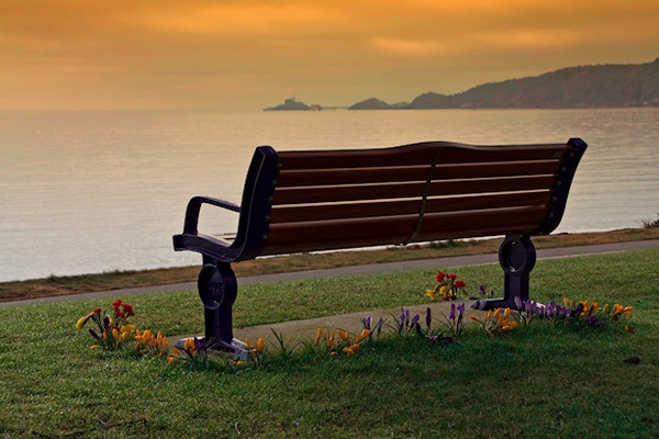 Bench with a View by mjstead