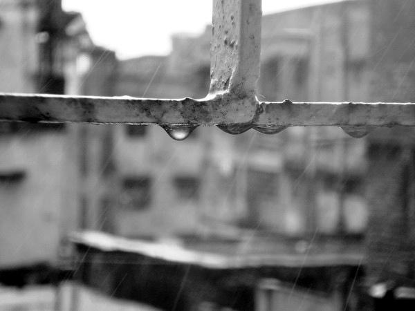 Summer Rain by Naved