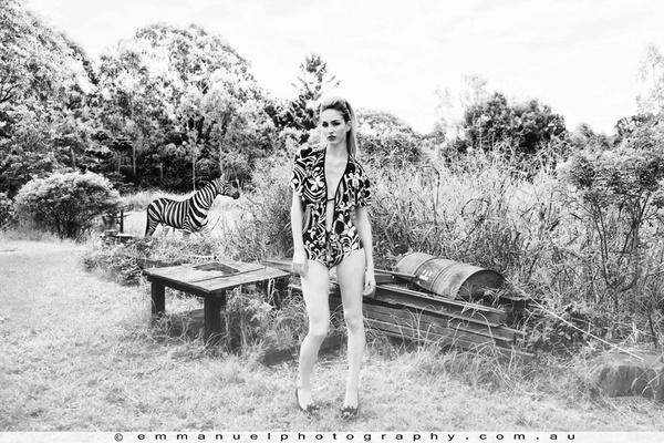 Spot the Zebra by KatrienaEmmanuel