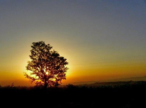 Silhouette.... by saurabha03