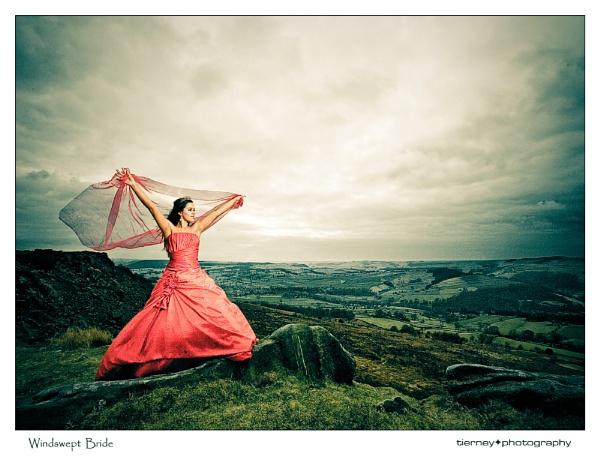 Windswept Bride by MarkT