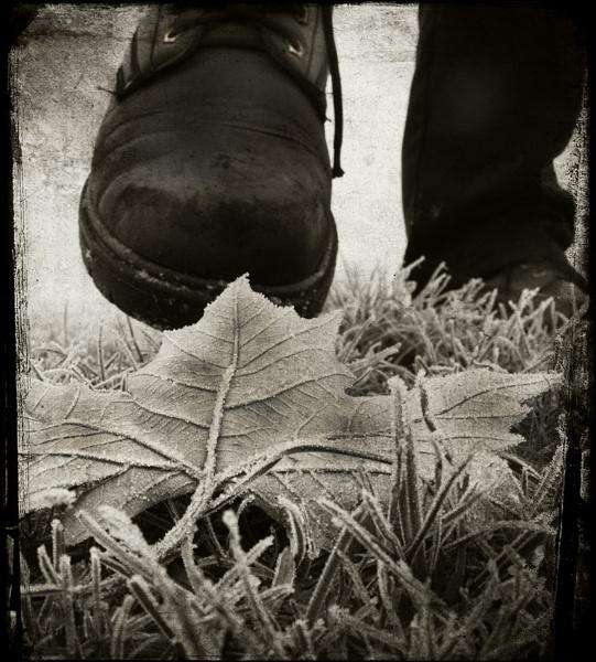 Under Foot by wyatturp