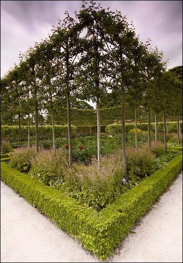 Alnwick Gardens by cassiecat