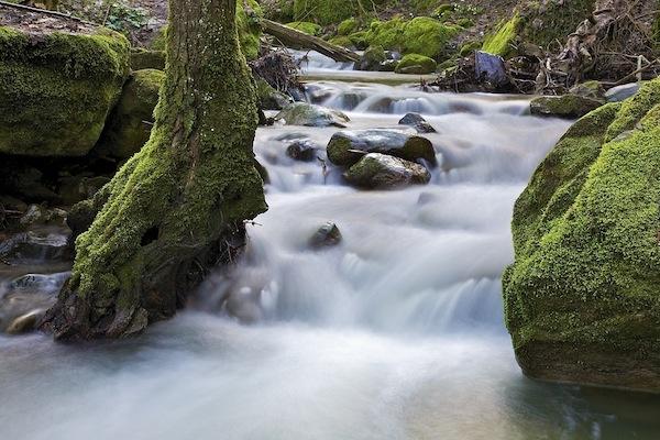 Water1 by pieroamorati