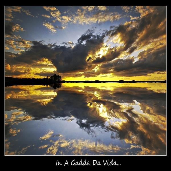 IN A GADDA DA VIDA... by Jou©o